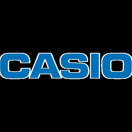 Casio Slim XJ-A247 DLP Projector - 16:10 - White, Light Gray